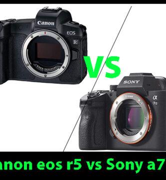 Canon eos r5 vs sony a7iii